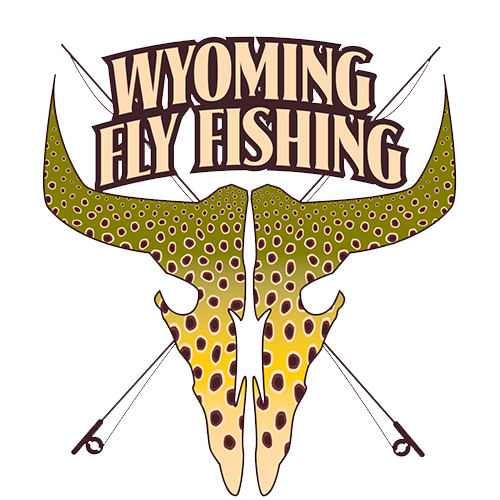 Big Horn / Wind River Fishing Report March 2018